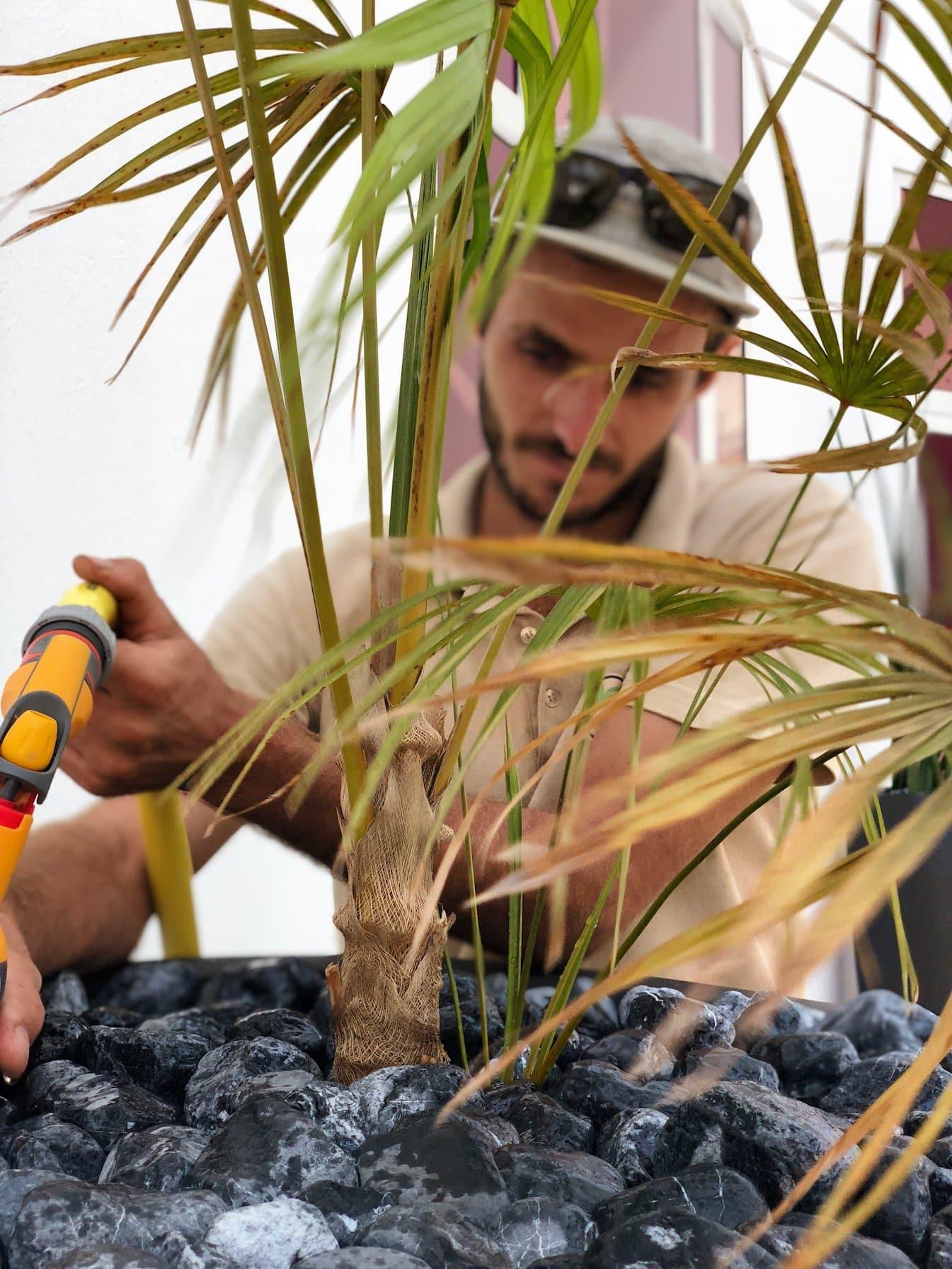 jardinier réalisant l'entretien