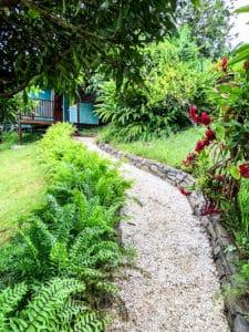 jardin tropical et allée en graviers